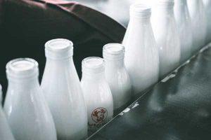 semen production