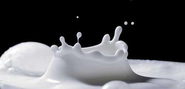 does milk reduce testosterone