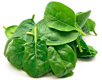 spinach good Source Of Vitamin B9